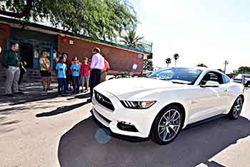 Photo of mustang