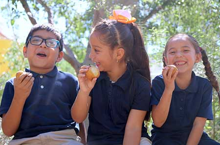 Photo of Students Eating Pears