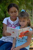 Photo of students reading outdoors