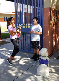 Students and service dogs welcome students at Mary Meredith